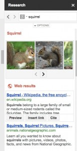 squirrel_research
